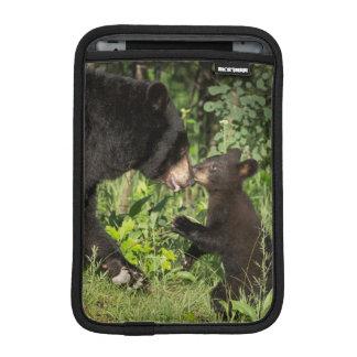 USA, Minnesota, Sandstone, Minnesota Wildlife 13 iPad Mini Sleeves