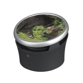 USA, Minnesota, Sandstone, Minnesota Wildlife 13 Bluetooth Speaker