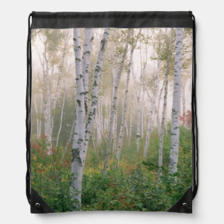 USA, New Hampshire. Birch trees in clearing fog Drawstring Bag
