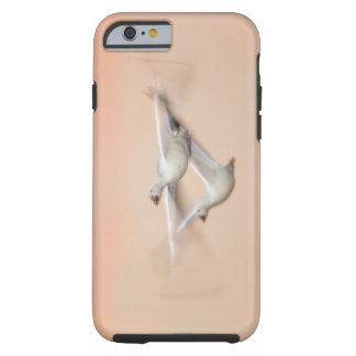 USA, New Mexico, Bosque del Apache National 3 Tough iPhone 6 Case