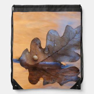 USA, New Mexico. Oak leaf in stream Drawstring Bag