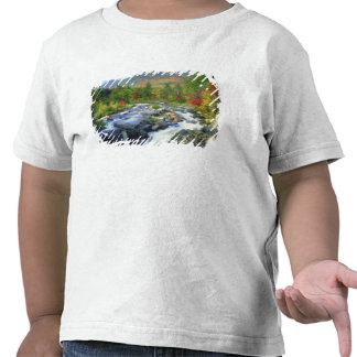 USA, New York. A waterfall in the Adirondack T Shirts