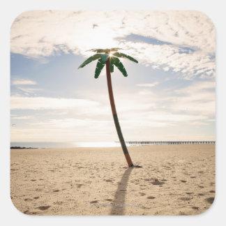 USA, New York City, Coney Island, palm tree on Square Sticker