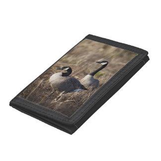 USA, Oregon, Baskett Slough National Wildlife 2 Tri-fold Wallets