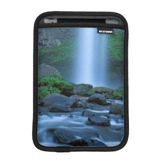 USA, Oregon, Columbia Gorge, Latourell Falls iPad Mini Sleeve
