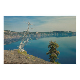 USA Oregon Crater Lake National Park 4 Wood Canvases