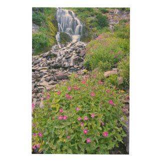 USA, Oregon, Crater Lake National Park Wood Prints