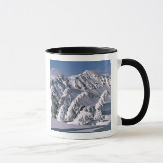 USA, Oregon, Crater Lake NP. Trees bow under the Mug