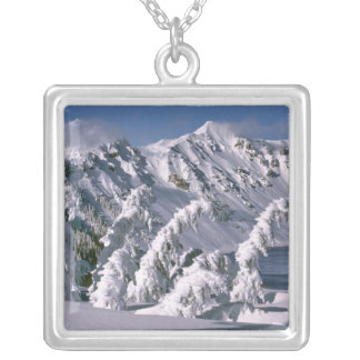 USA, Oregon, Crater Lake NP. Trees bow under the Silver Plated Necklace