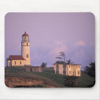 USA, Oregon, Port Orford Region, Cape Blanco Mouse Pad