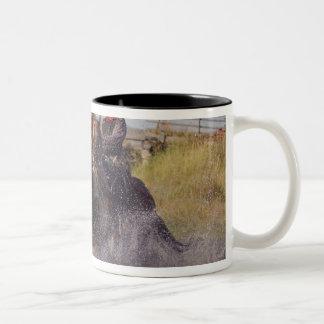 USA, Oregon, Seneca, Ponderosa Ranch. Cowboy 2 Two-Tone Coffee Mug