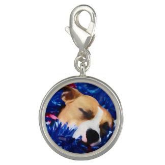 USA Patriotic Dog American Pit Bull Terrier