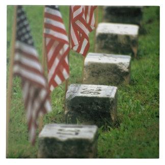USA, Pennsylvania, Gettysburg. Civil war Tile