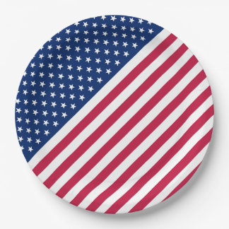 USA Red White Stripes Stars Flag Party Paper Plate