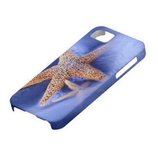 USA, South Carolina, Hilton Head Island. Two iPhone 5 Case