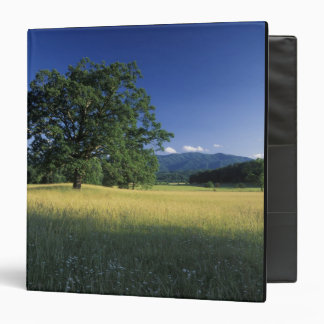 USA, Tennessee. Great Smokey Mountains 3 Binders