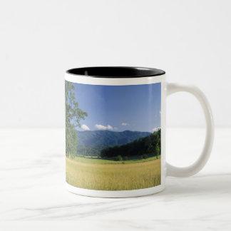 USA, Tennessee. Great Smokey Mountains 3 Two-Tone Mug