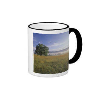 USA, Tennessee. Great Smokey Mountains Ringer Mug