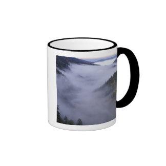 USA, Tennessee. Great Smokey Mountains National Ringer Mug