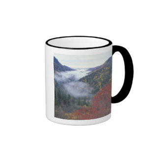 USA, Tennessee, Great Smokey Mountains National Ringer Mug