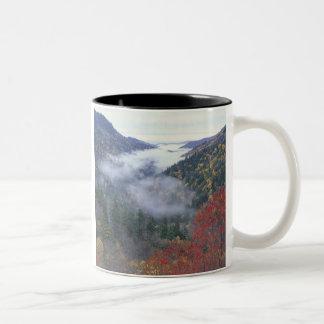 USA, Tennessee, Great Smokey Mountains National Two-Tone Mug