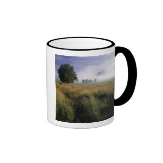 USA, Tennessee, Great Smokey Mountains Ringer Mug