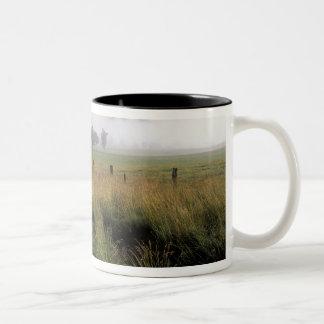 USA, Tennessee, Great Smokey Mountains Two-Tone Mug
