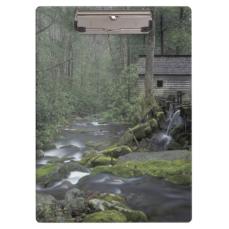 USA, Tennessee, Great Smoky Mountains National 3 Clipboard