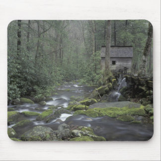 USA, Tennessee, Great Smoky Mountains National 3 Mouse Pad