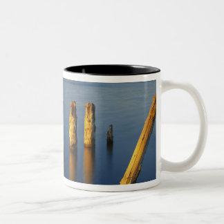 USA, Utah, Great Basin, Saltair, Great Salt Mug