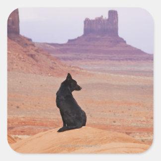 USA, Utah, Monument Valley, Dog sitting on rock Square Sticker