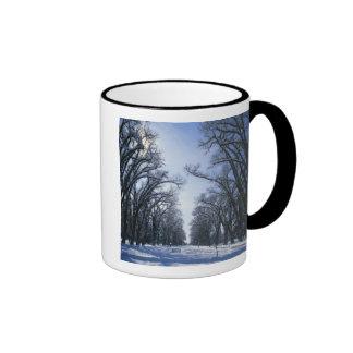 USA, Utah, Salt Lake City, Liberty Park, Coffee Mugs