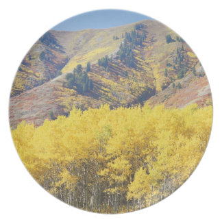 USA, Utah, Wasatch-Cache National Forest, Plate