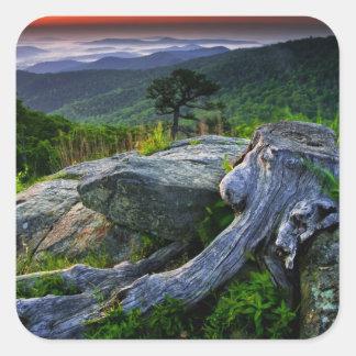 USA, Virginia, Shenandoah National Park. Sticker