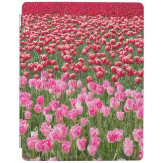 USA, Washington. Field Of Multicolored Tulips iPad Cover