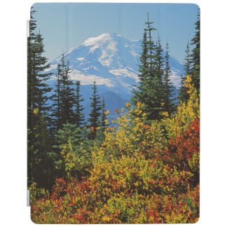USA, Washington, Mt. Rainier National Park 2 iPad Cover