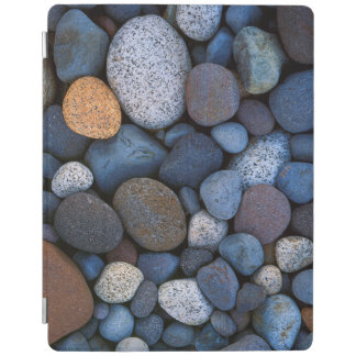 USA, Washington, Mt. Rainier National Park iPad Cover
