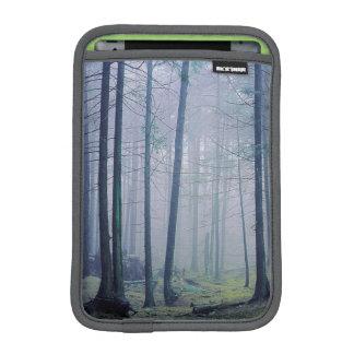 USA, Washington, Orcas Island, Moran State Park iPad Mini Sleeve