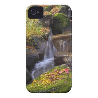 USA, Washington, Seattle iPhone 4 Case