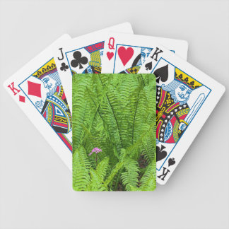 USA, Washington, Seattle, Washington Park Bicycle Playing Cards