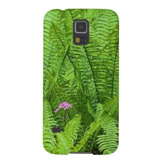 USA, Washington, Seattle, Washington Park Galaxy S5 Cover