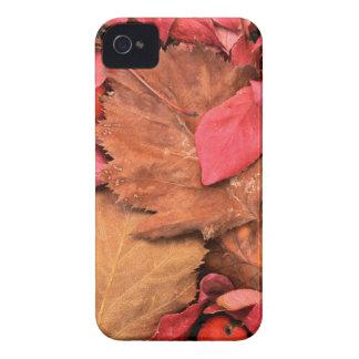 USA, Washington, Spokane County, Frost Case-Mate iPhone 4 Cases