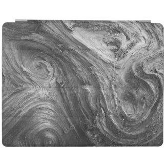 USA, Washington State. Douglass Fir iPad Cover