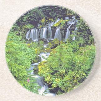 USA, Washington State, Mt Adams Wilderness. Twin Coaster