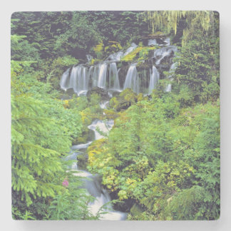 USA, Washington State, Mt Adams Wilderness. Twin Stone Coaster