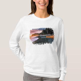 USA, Washington State, Olympic NP. Waves lap the T-Shirt