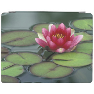 USA, Washington State, Seattle. Water lily and iPad Cover
