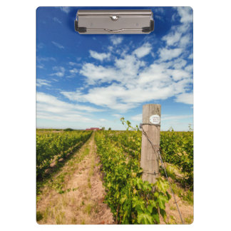 USA, Washington, Walla Walla. Cabernet Sauvignon Clipboard