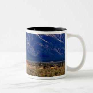 USA, Wyoming, Grand Teton National Park, Morning Two-Tone Coffee Mug