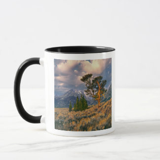 USA, Wyoming, Grand Teton NP. Sunrise greets a Mug